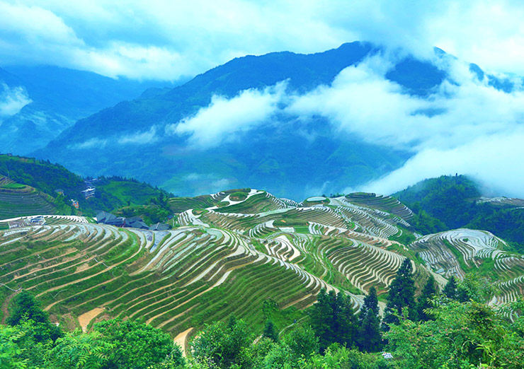 Longji Terraced Fields, Guilin