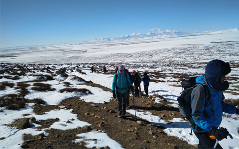 Mount Kailash Kora Trek: Guide on Your Lifetime Mount Kailash Pilgrimage