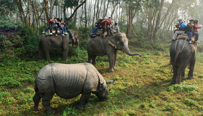 Explore Chitwan National Nature Preserve