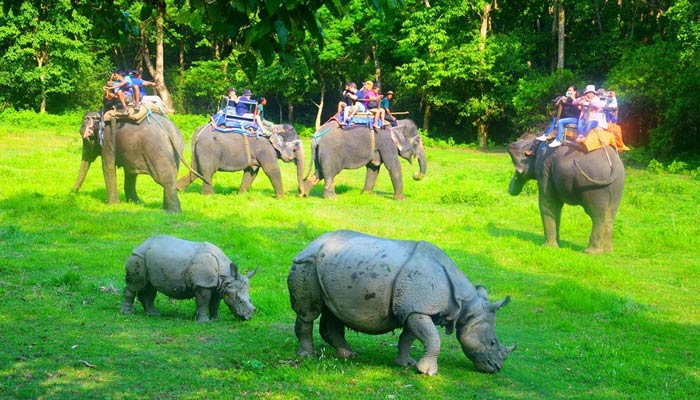 Chitwan National Park is very popular for the tourists