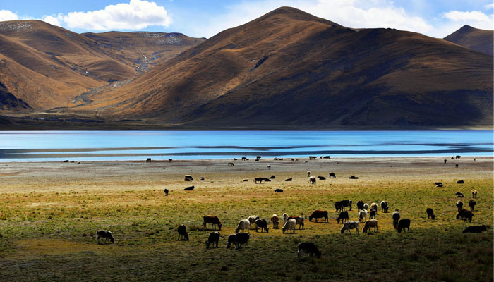 Fall is also the best time to vist Tibet