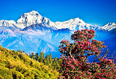 Stunning panoramic views of Himalayan peaks from Pokhara