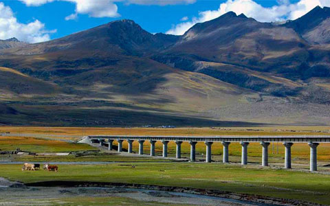Which One is Better? Get to Tibet by Train or Flight?
