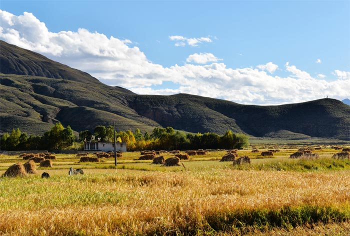 Visit Shigatse in Autumn