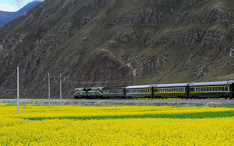 13 Days Best of China and Tibet Tour with Tibet Train Experience