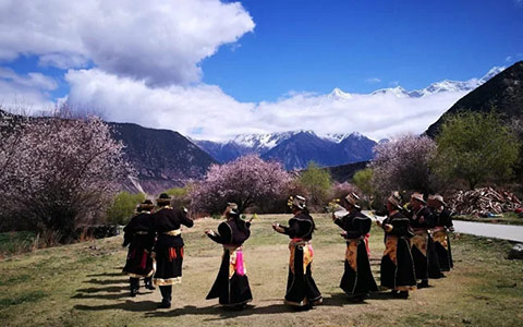 Not Just Peach Blossom in Spring! Nyingchi is Worth Visiting in Four Seasons